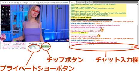 海外ライブチャットのチャット画面
